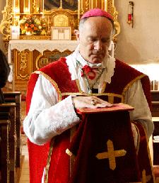 Bishop Williamson calls talks between SSPX and Vatican ...